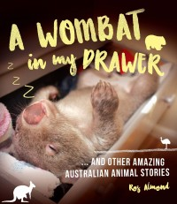 A Wombat in my Drawer