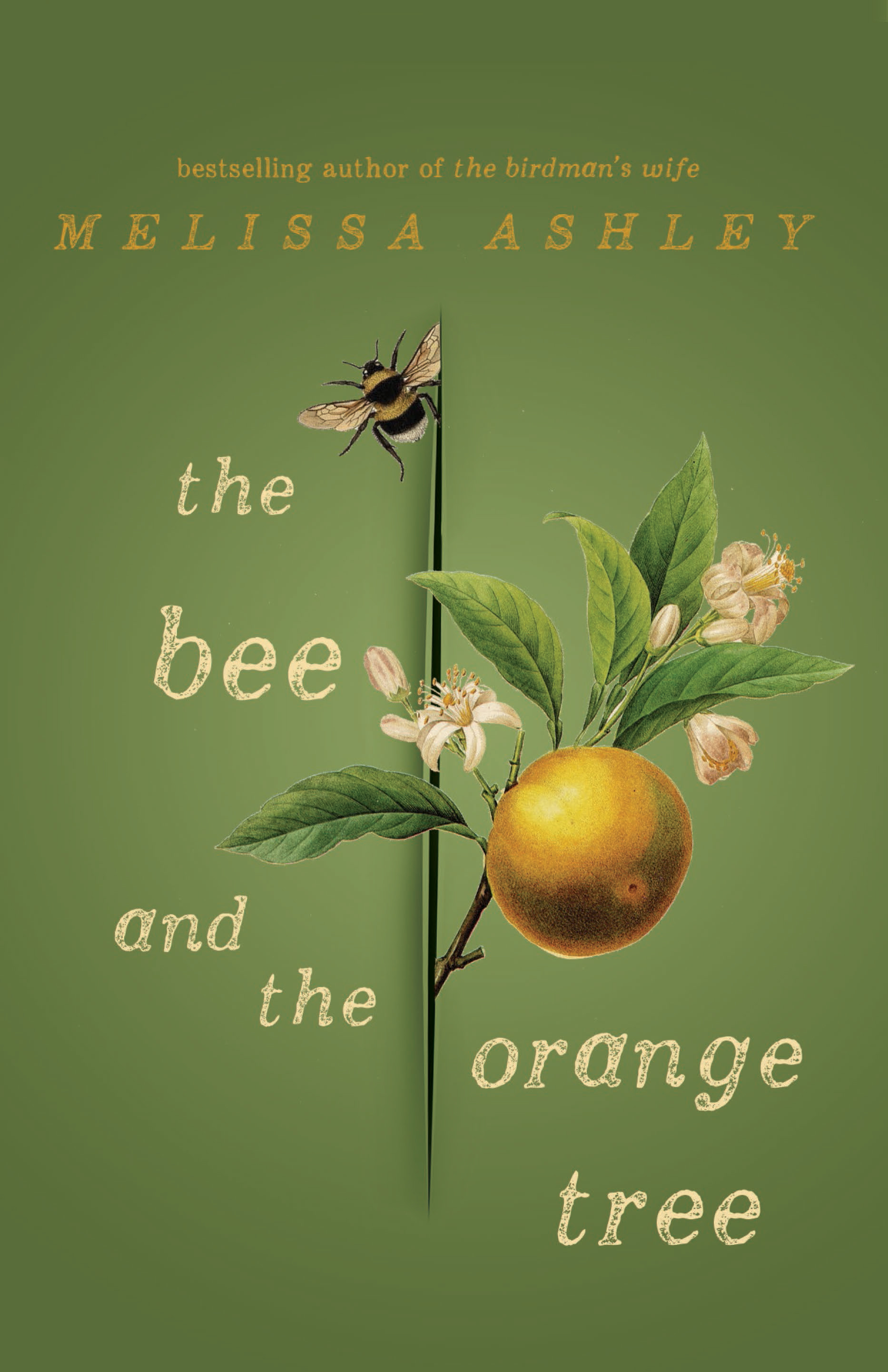 The Bee and the Orange Tree Melissa Ashley